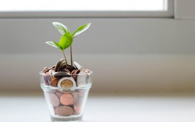 How to Save Money in South Africa?